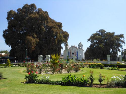 Arbol del Tule, Mexico - plaza