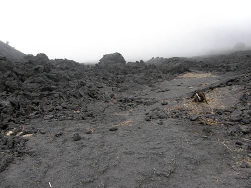 Pacaya: Path to the crater