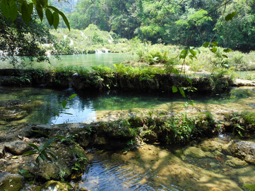 Semuc Champey: Pools