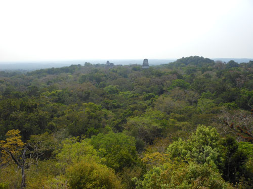 Tikal: View from Temple 4