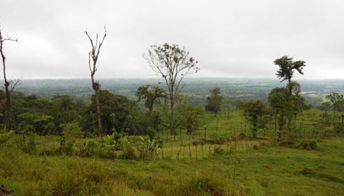 Cerro Chato: viewing point