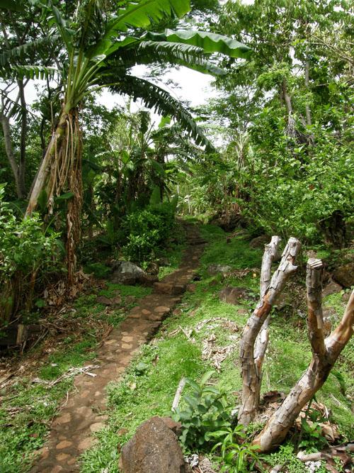 Ometepe Island: a path in El Zopilote