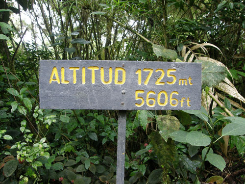 Santa Elena National Park Height