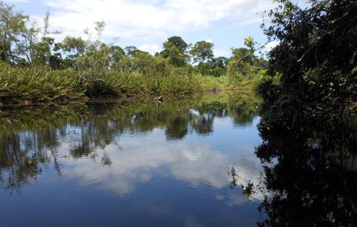 Costa Rica: Cahuita National Park lagoon