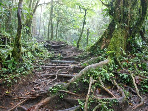 Costa Rica: Cerro Chato path