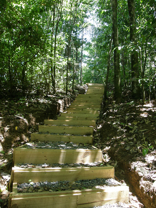 Manuel Antonio National Park: new path