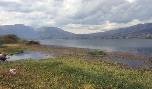 Otavalo - Laguna de San Pablo