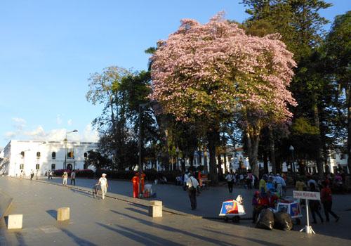 Popayan main plaza