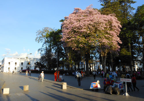Popayan main plaza