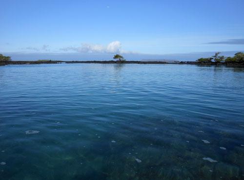 Isabela, Galapagos - Concha y Perla bay