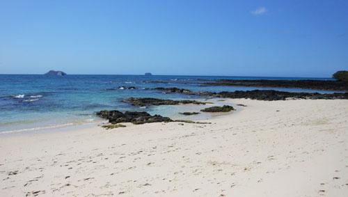 North Seymour, Galapagos - beach off Santa Cruz for snorkeling