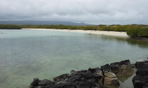Santa Cruz, Galapagos - Tortuga Bay