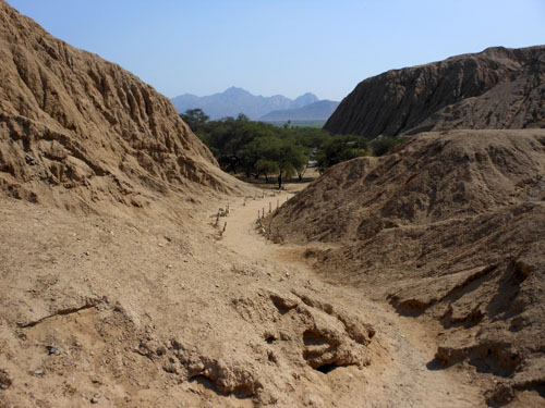 Path through Sipan archaeological site