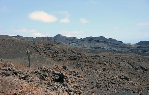 Galapagos, Isabela Island - lava landscape