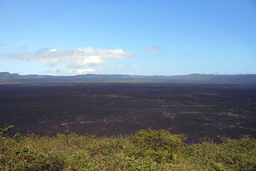 Galapagos, Isabela Island - Sierra Negra volcano second widest in the world