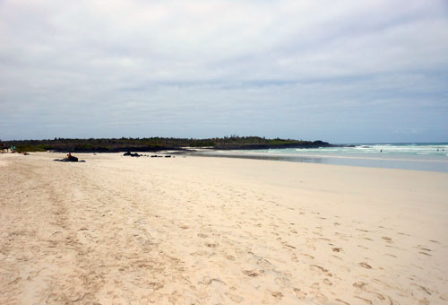 Galapagos, Santa Cruz Island - sandy surf beach at Tortuga Bay