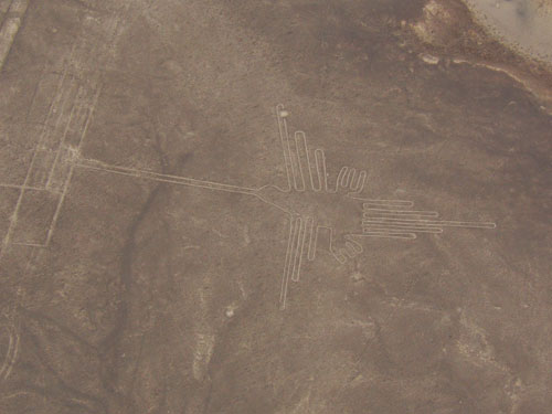 Nazca lines - the humming bird