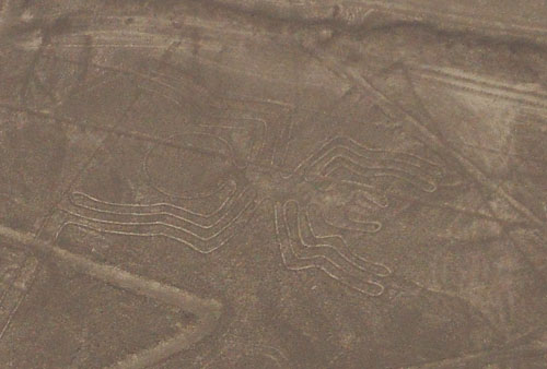 Nazca lines - the spider