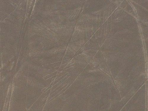 Peru, Nazca Lines - the condor - 132 meters