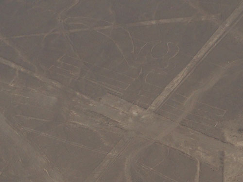 Peru, Nazca Lines - the parrot - 200 meters