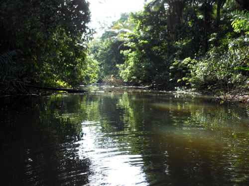 Bolivia, Serere Reserve - canoe ride on channel between lakes