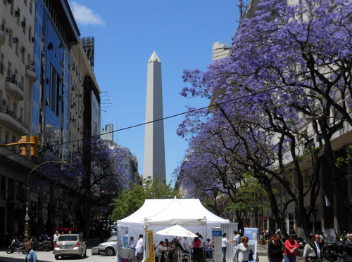 Buenos Aires - the obelisk and ever present purple trees