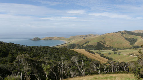 New Zealand, North Island - approaching Port Jackson
