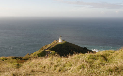 New Zealand, North Island - Cape Reinga, on the way to lighthouse