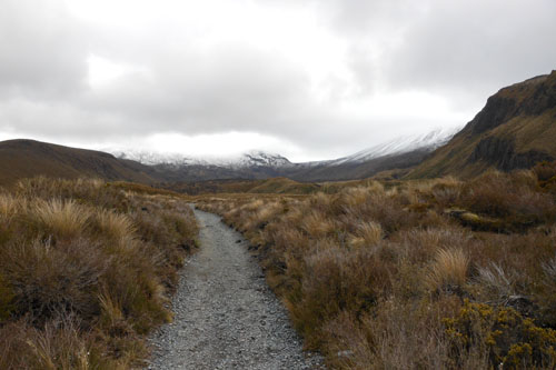New Zealand, North Island - Tongariro National Park, start of the Alpine crossing