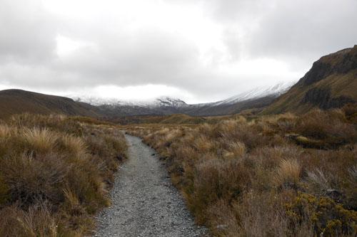 New Zealand, North Island - Tongariro National Park, start of the Alpine crossing