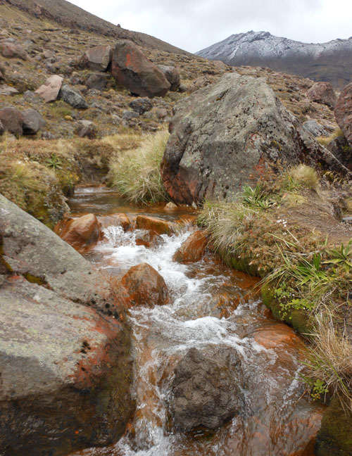 New Zealand, North Island - Tongariro National Park, stream by the path