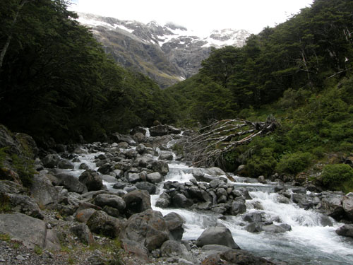 New Zealand, South Island - Beally Valley, near Arthur's Pass